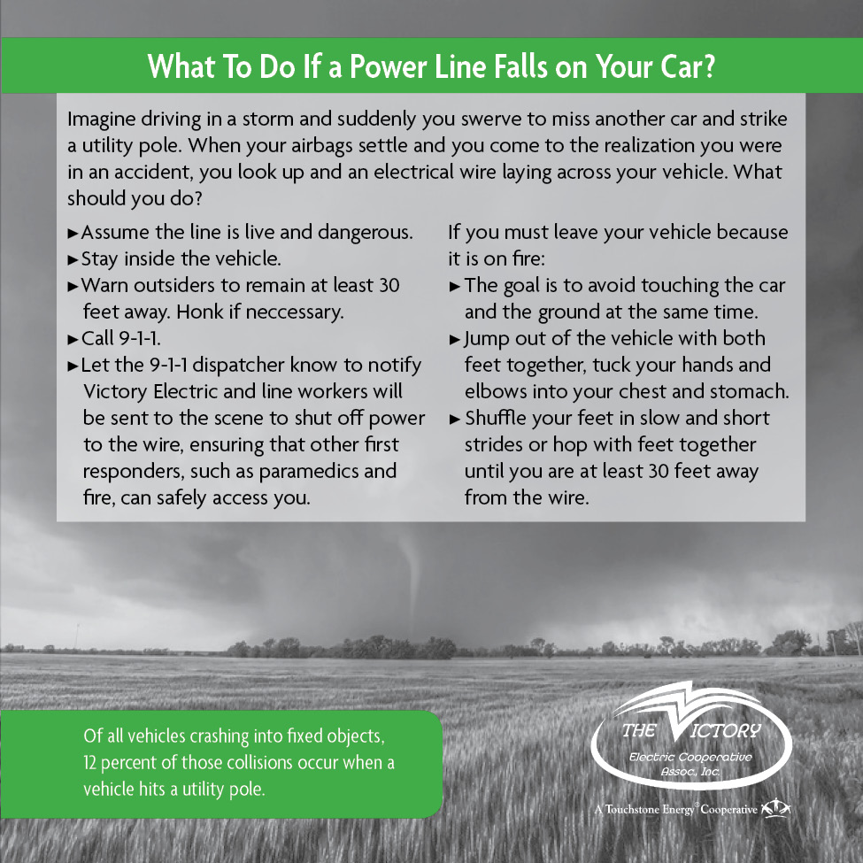 What to do if a powerline falls on your car